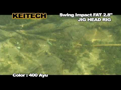 Shad Keitech Swing Impact FAT Castaic Choise 406