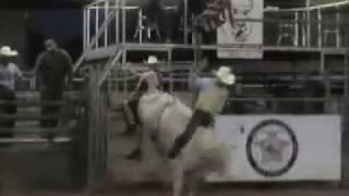HCR Ace Cowboy August 2011.mov