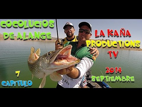 CAPITULO 7 COCOLUCIOS DE ALANGE EN HD