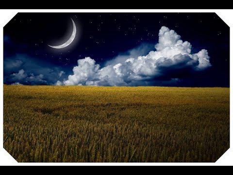 Relaxing music   Relaxing Sleep Music Deep Sleeping Music, Stress Relief, Meditation Music, asmr.