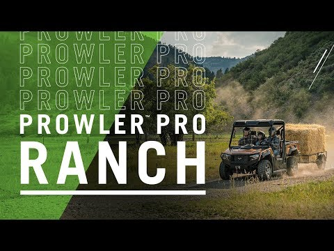 2019 Textron Off Road Prowler Pro Ranch Edition in Valparaiso, Indiana - Video 1