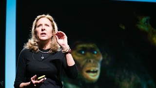 Helen Fisher: What we want