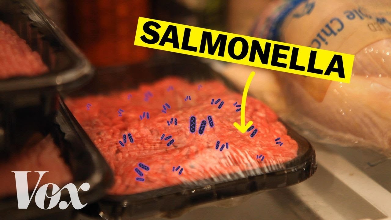 How salmonella-tainted food gets in your fridge thumbnail