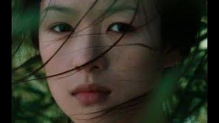 【越哥】详解李安导演《卧虎藏龙》:中国人的情欲和德道!