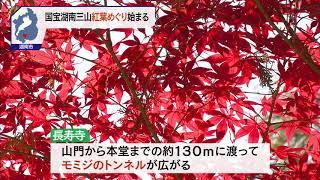 11月14日 びわ湖放送ニュース
