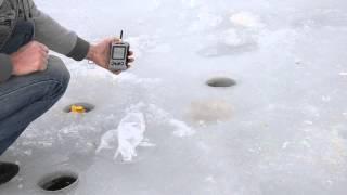 Испытания показаний глубины эхолота FFW718