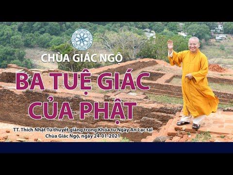 Ba tuệ giác của Phật