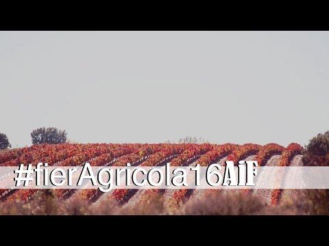 Fieragricola, un punto di riferimento internazionale nel settore agricolo