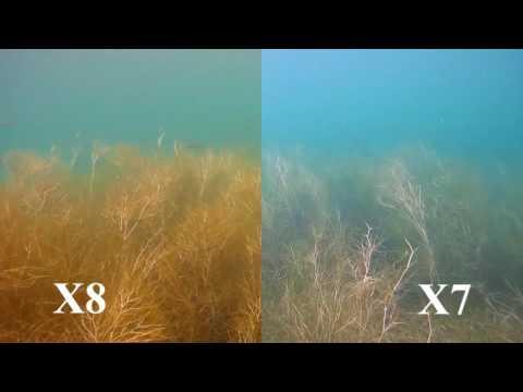 ActionPro X8 vs. ActionPro X7 - Runde 6: Videoqualität Unterwasser | Test & Review [Deutsch]