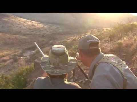 David Thompson - Kudu Hunt 2014