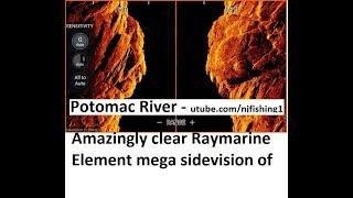 Raymarine element 9 hv 100