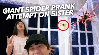 GIANT SPIDER PRANK ATTEMPT ON SISTER   Ranz and Niana
