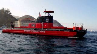 Undersea Expedition | Visit Catalina Island