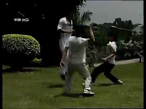 Shaolin Kung Fu combat show by Shi xingyu