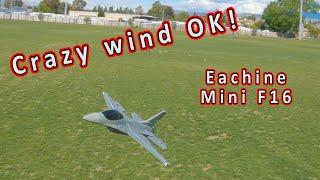 Eachine Mini F16 Falcon RC Fighter Jet Review ✈️