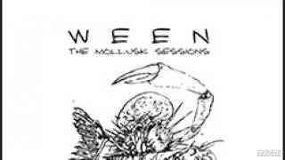 Ween - Mollusk Sessions - Cold Blows The Wind