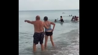 BABY SHARK sends people running for their lives in Hollywood Florida
