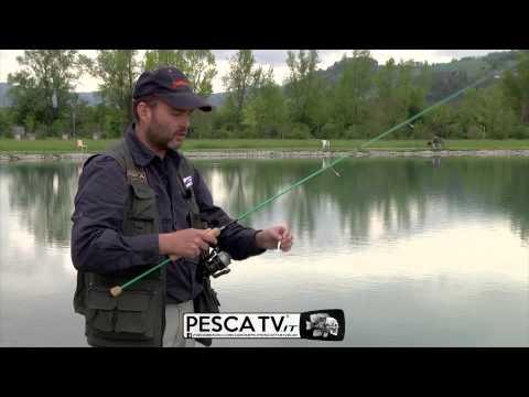 Se vale fare Vitebsk che pesca nella previsione di morderlo a pesca