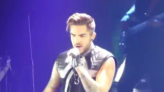 Adam Lambert - Evil in the Night, For Your Entertainment - Sydney 2, 31 Jan 2016