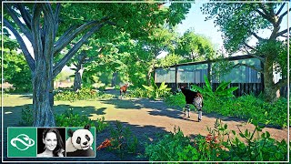 🐼 Okapi Habitat | Speed Build | Planet Zoo | Meilin Zoo | Ep. 21 |