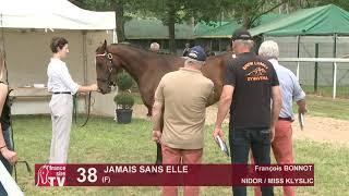 Video  de JAMAIS SANS ELLE #1
