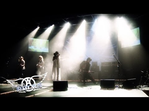 Aerosmith Rocks Tribute Band - 2013 Promo Video
