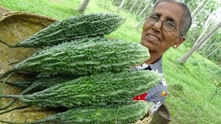 Bitter Gourd Masala Curry ❤ Healthy Village Food by Grandma | Village Life