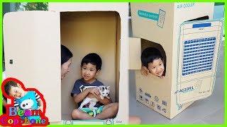 น้องบีม | บ้านแมวกล่องกระดาษ