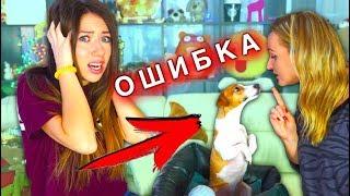 5 Ошибок Каждого Хозяина Дрессировка Собак С чего начать | Elli Di Pets