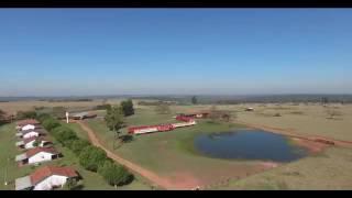 Agropecuária San Rafael  Ype Jhú - Canindeyú - Paraguai Vídeo  enviado via WhatsApp pelo nosso parce