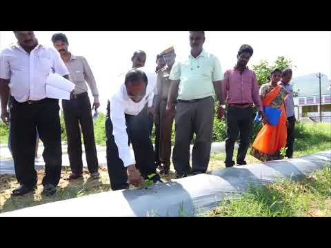 Water Conservation Initiatives in Madurai