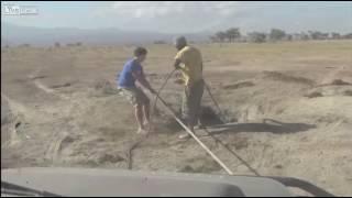 Трогательное и волнительное видео спасения слонёнка, упавшего в яму  (Кения)