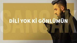 Sancak - Dili Yok Ki Gönlümün (Feat. Gitar Barış)
