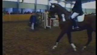 preview picture of video 'Reitturnier Verein Birkenhof Oyten Bassen (1999)'