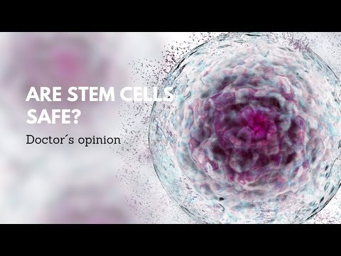 Are-Stem-Cell-Safe-Expert-Opinion-at-Ilaya-in-Kiev-Ukraine