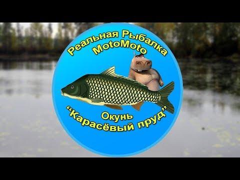 Как поймать Окуня на Карасёвом пруду [АРХИВ] | Реальная рыбалка