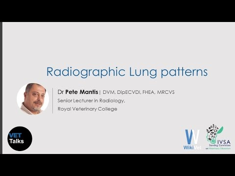 VET Talks- Radiographic Lung Patterns