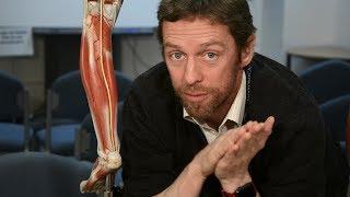 Anatomy of the calf (posterior leg)