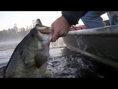 Froggin For Trophy Bass – Top Water Bass Fishing