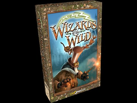 Undead Viking Review of Wizards of the Wild