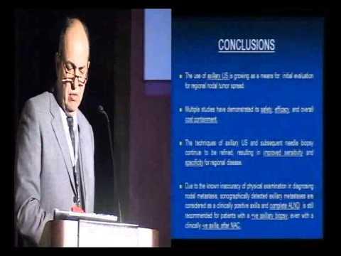 Prof. Shrif Nagib