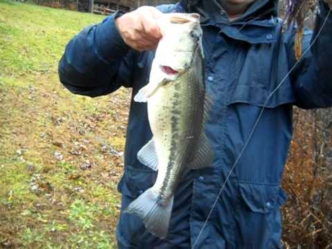 Private Pond Bass Fishing