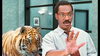 【小Q】小夥從小能和動物說話,長大成了醫生後,連老虎都求他治病!