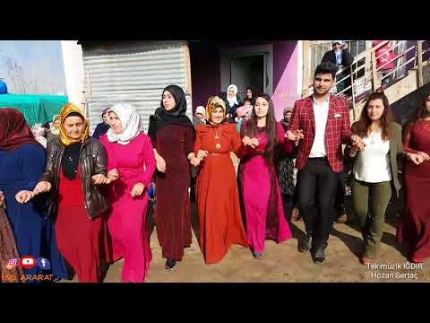 Tek müzik ığdır kolikent köyü DELİLO HALAY 2018