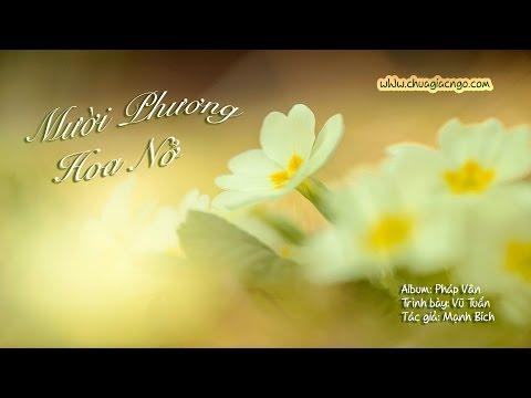 Mười phương hoa nở
