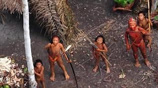 TOP 5 Nejzáhadnější objevy hluboko v džungli