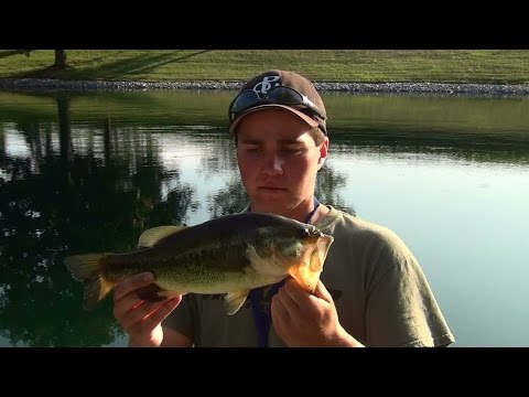 Largemouth Bass Fishing Pennsylvania 2014