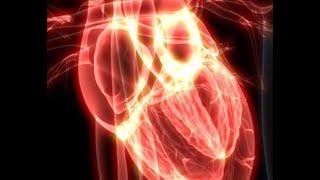 Alerta! Covid-19 pode atingir outros órgãos além do pulmão.
