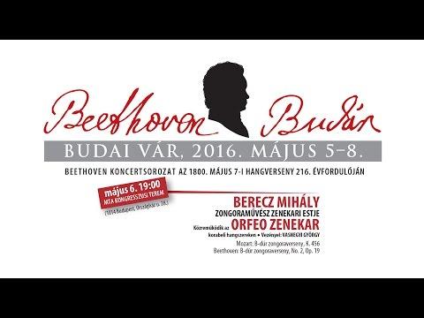 Beethoven Budán 2015 - Berecz Mihály és az Orfeo Zenekar - video preview image
