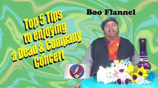 Top 5 Tips to Enjoying a Dead & Company Concert